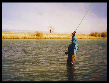 Plan your fly fishing trip to the Rockies of Colorado aor Montana!